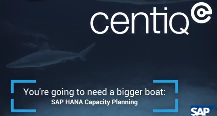 SAP HANA Capacity Planning | We're going to need a bigger boat!