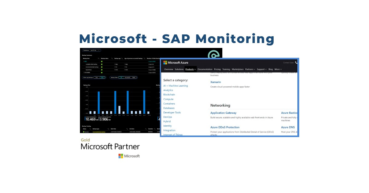 Why we helped Microsoft build an SAP monitoring product to compete with our own.